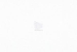 Техно-блэкаут-белый