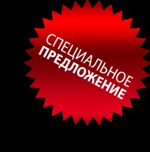 1381736741_offer